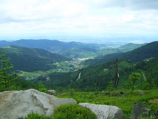 Grindenschwarzwald