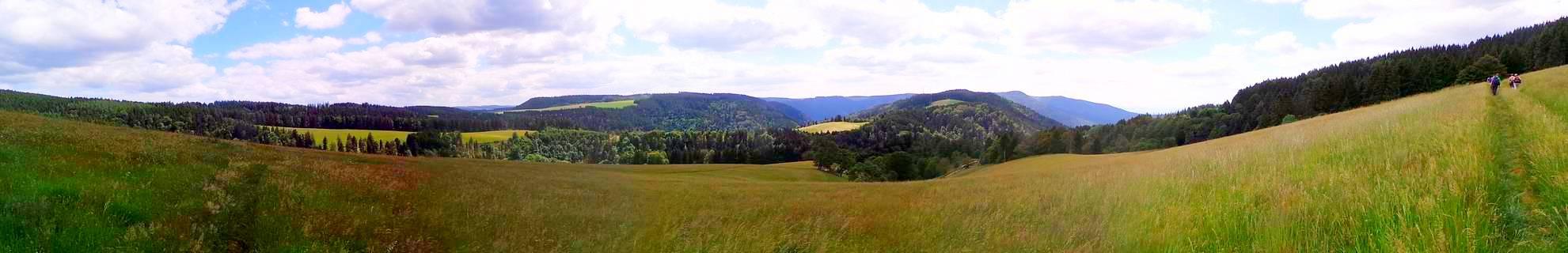 Panoramablick über die Schwarzwaldhöhen