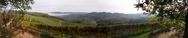 Ortenau-Panorama