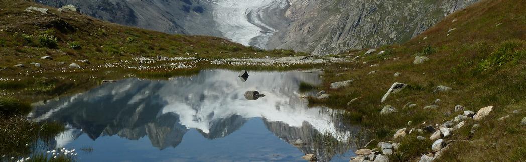 Blick zum Oberaargletscher