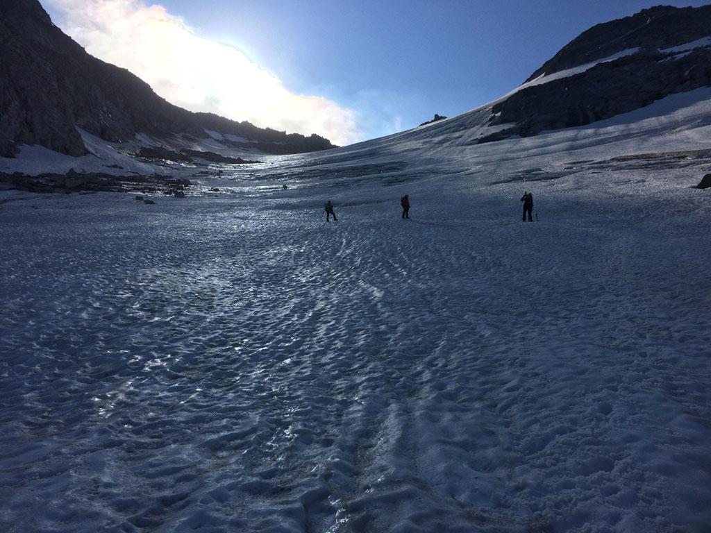 Gletscher Großer Löffler